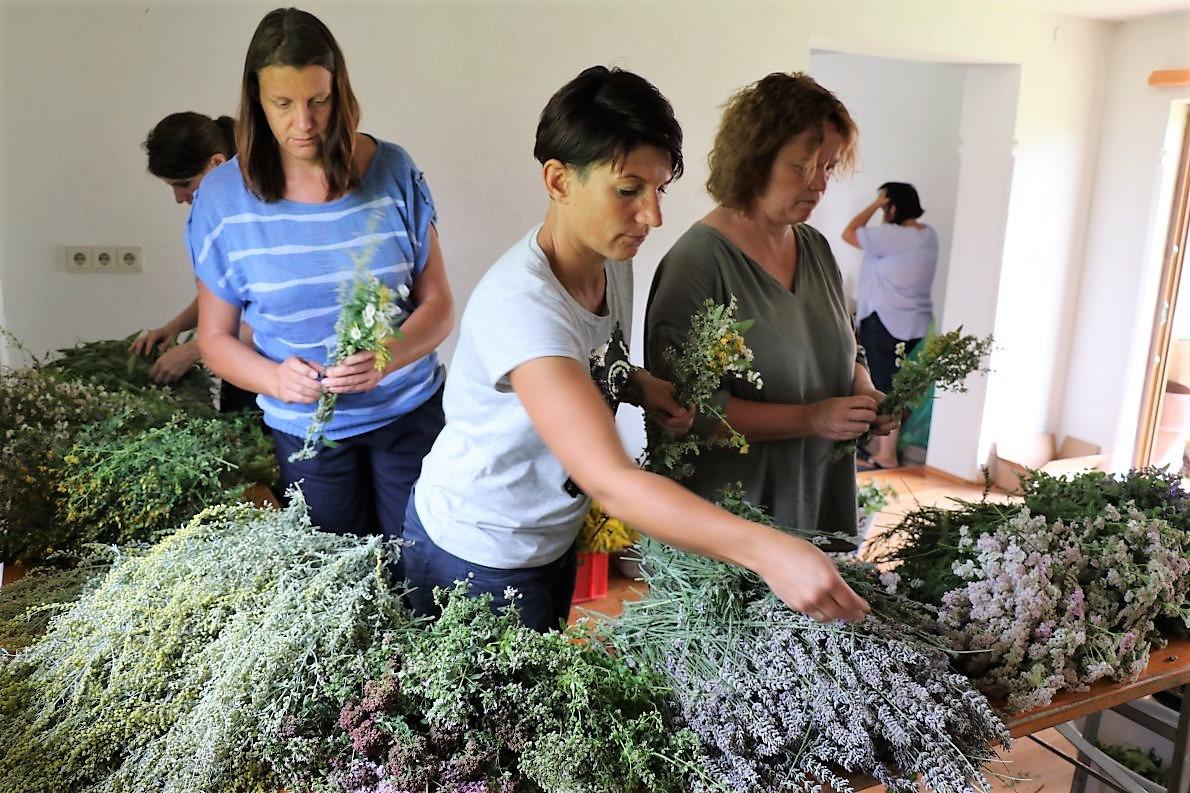 Mieminger Bäuerinnen binden Kräuterbüschl